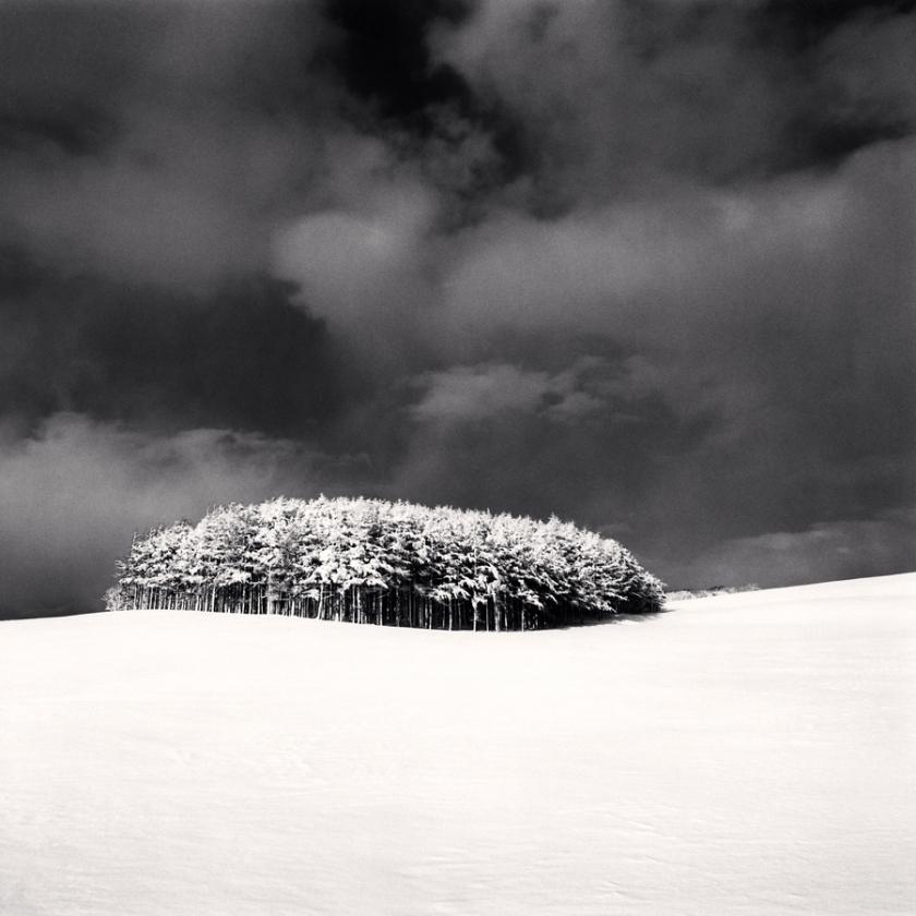 'White Copse, Study 3' Wakkanai, Hokkaido Japan