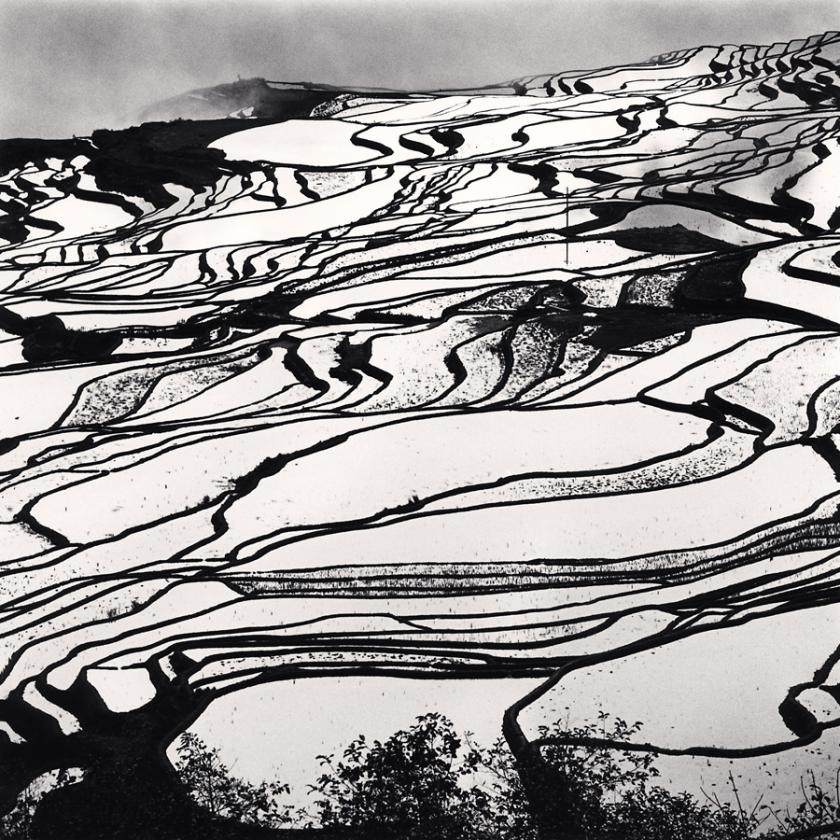 Yuanyang,-Study-2,-Yunnan,-China.-2013