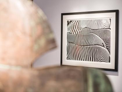 Expo Mixed - Leonhard's Gallery