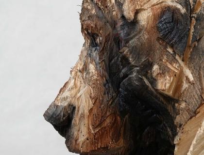 Ours, profile - Jürgen Lingl-Rebetez - Leonhard's Gallery