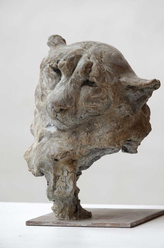 Buste De Guépard - Jürgen Lingl-Rebetez - Leonhard's Gallery
