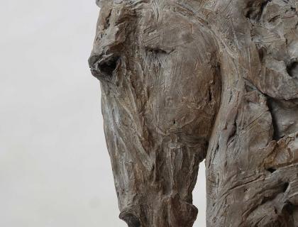 Buste De Cheval, Tete Vers Le Bas, detail - Jürgen Lingl-Rebetez - Leonhard's Gallery
