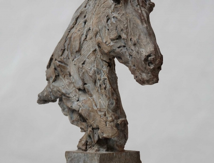 Buste De Cheval, side - Jürgen Lingl-Rebetez - Leonhard's Gallery