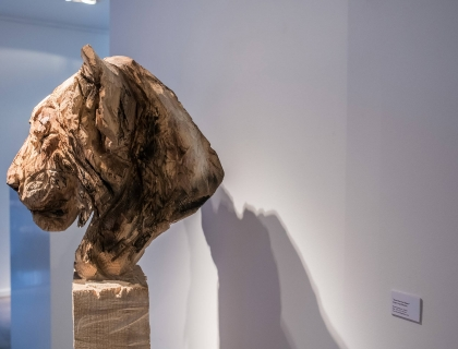 Exhibition - Jurgen Lingl-Rebetez - Leonhard's Gallery - Antwerpen