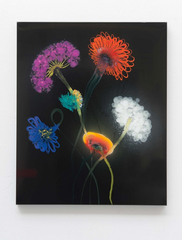 Perfect-Night-Calisto - Thierry Feuz - Leonhard's Gallery