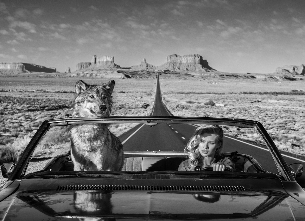 Road Trip - David Yarrow - Leonhard's Gallery