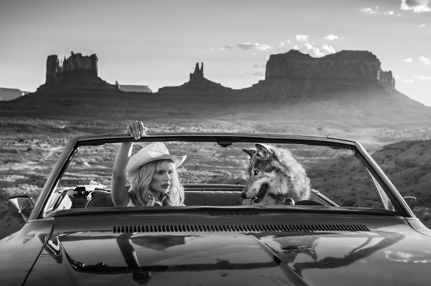 The Break Up - David Yarrow - Leonhard's Gallery