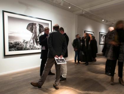 Vernissage David Yarrow - Leonhard's Gallery