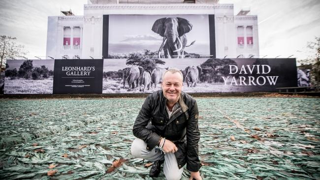 David Yarrow MSKA - Museum Voor Schone Kunsten Antwerpen - Leonhard's Gallery