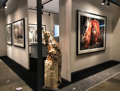 Eurantica 2019 - Leonhard's Gallery