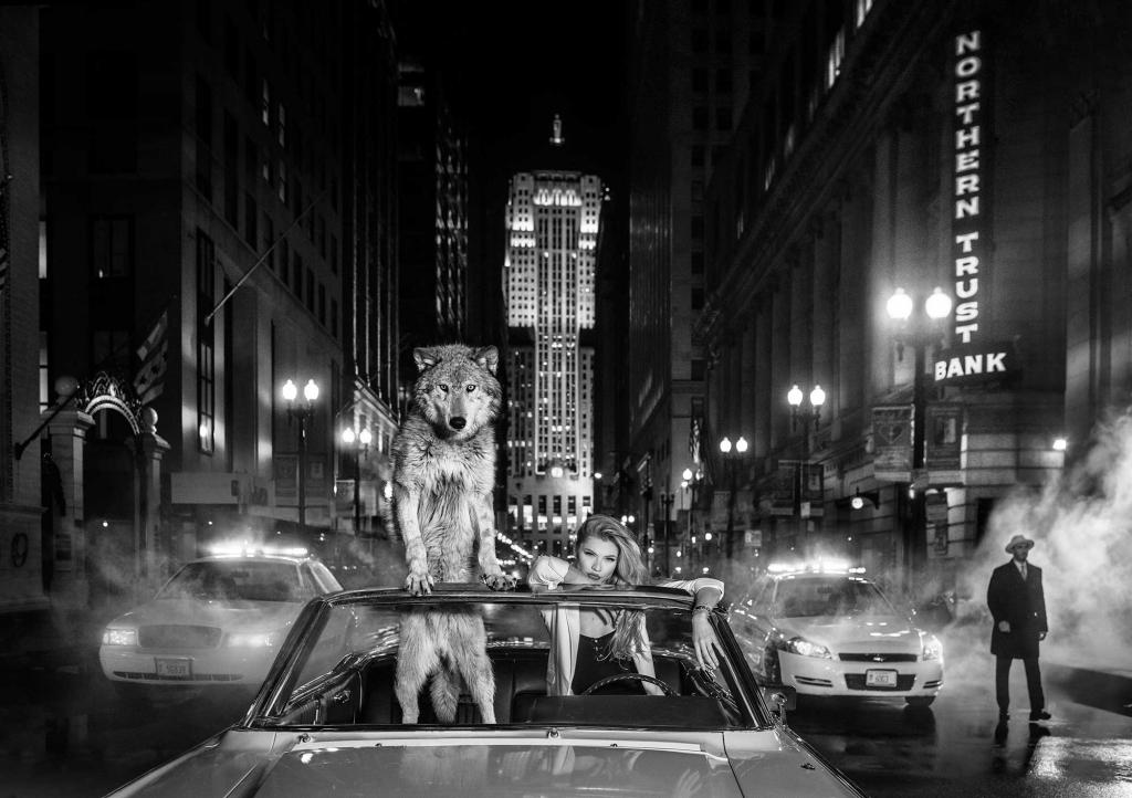 Chicago - David Yarrow - Leonhard's Gallery