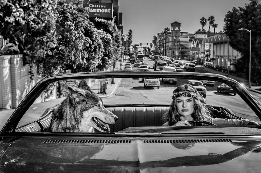 Chateau-Marmont - David Yarrow - Leonhard's Gallery