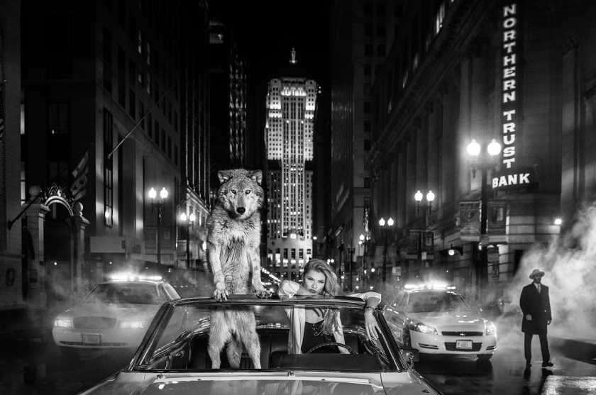Chicago - David Yarrow - Leonhard's Gallery