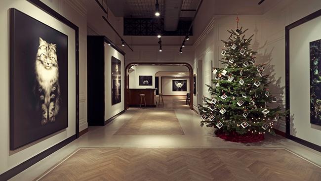 Leonhard's Gallery - Schutterhofstraat