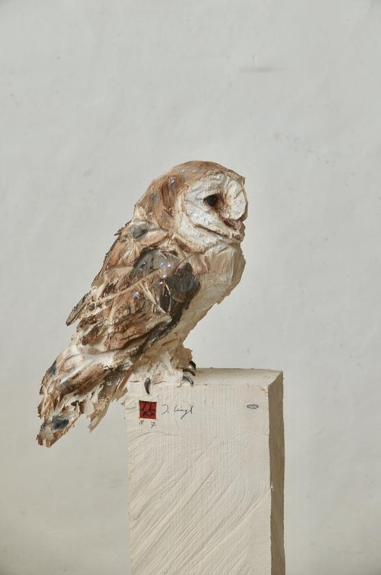 Chouette Effraie - Jürgen Lingl - Leonhard's Gallery