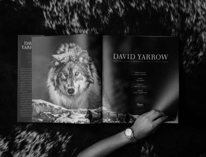 David Yarrow New Book - Leonhard's Gallery