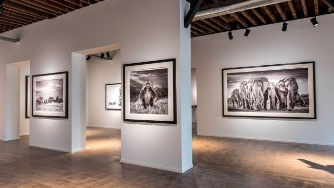 Leonhard's Gallery - Godefriduskaai 50 -,2000-Antwerp