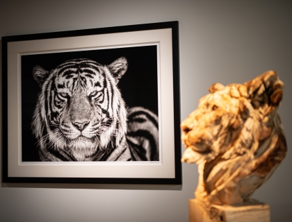 Leonhard's Gallery at the Waterside - Exhibition David Yarrow
