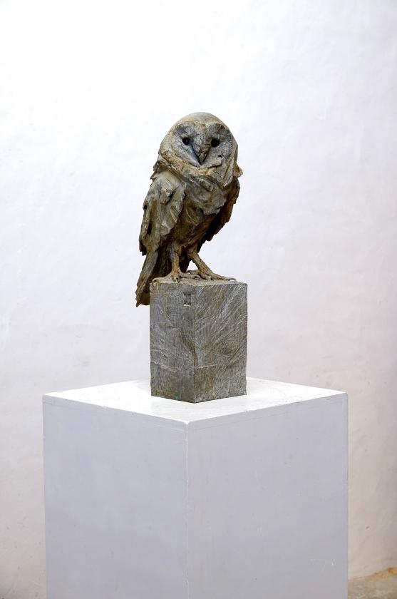Chouette bronze - Jürgen Lingl - Leonhard's Gallery