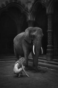 Humble - Marc Lagrange - Leonhard's Gallery